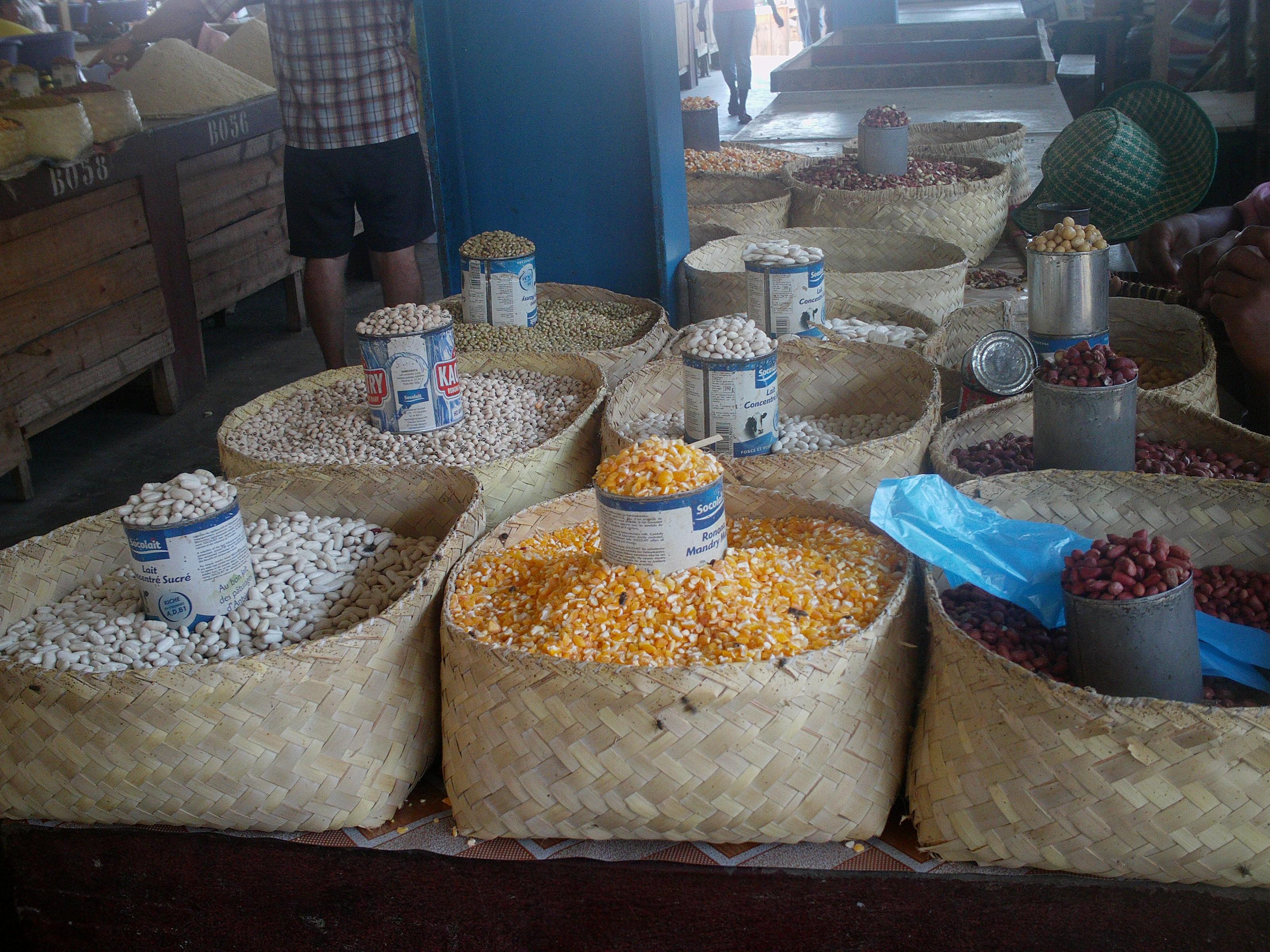 Artisanat-Les céréales