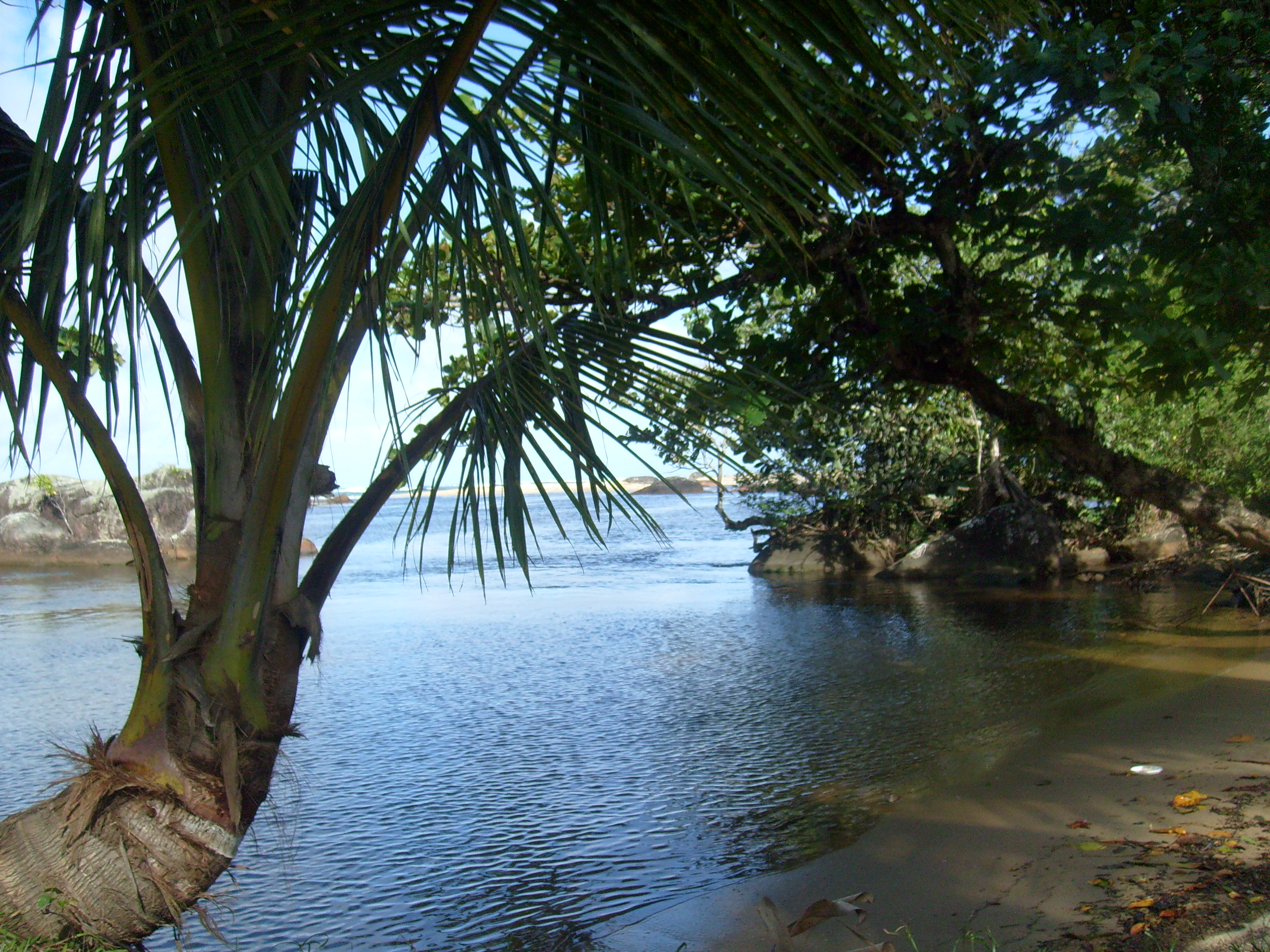 Un îlot de Madagascar